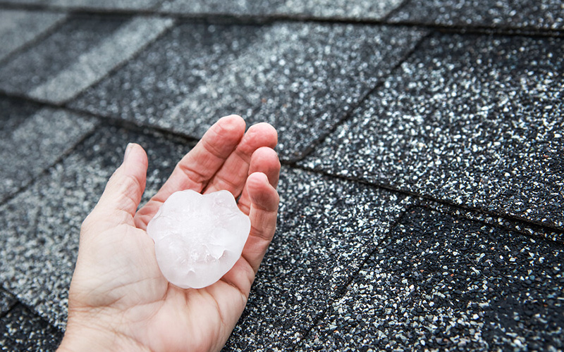 insurance claims handling for damaged roofs